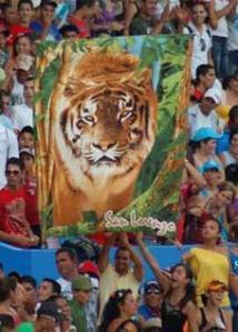 La afición de los Tigres avileños lista para los play off.